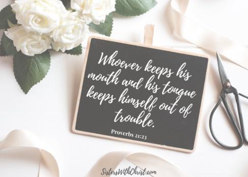 Proverbs 21_23